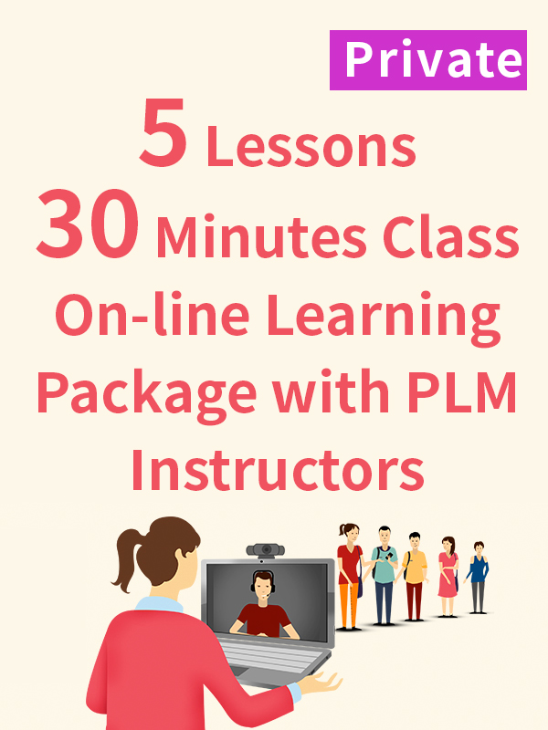 Private On-line Learning Package with PLM Instructors - 5 Lessons - 30 Minutes
